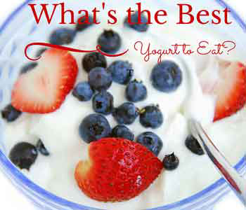 Choosing the Best Type of Yogurt