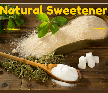 Best Natural Sweeteners