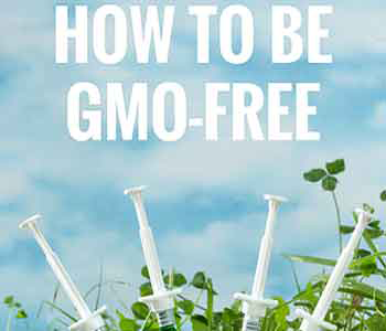 How to Be Informed and Educated About Genetically Modified Ingredients